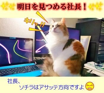 明日を見つめる社長.jpg